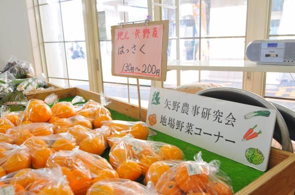 08_農彩館矢野とれとれ市場_柑橘類はっさくなど
