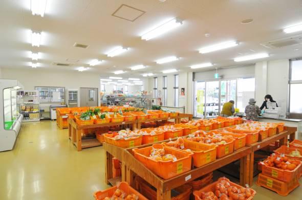 02柑橘いっぱい内観